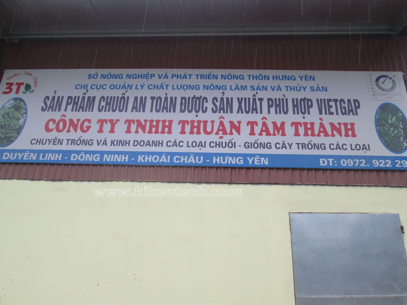 Dự án lắp đặt kho lạnh bảo quản chuối ở Hưng Yên