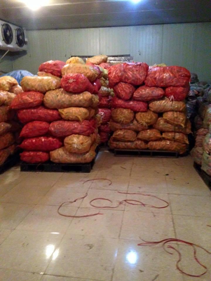 Thi công lắp đặt kho lạnh bảo quản ở Thái Bình, làm kho lạnh, lắp kho lạnh ở tỉnh Thái Bình. Kho lạnh bảo quản nông sản, lắp kho lạnh uy tín tại Thái Bình