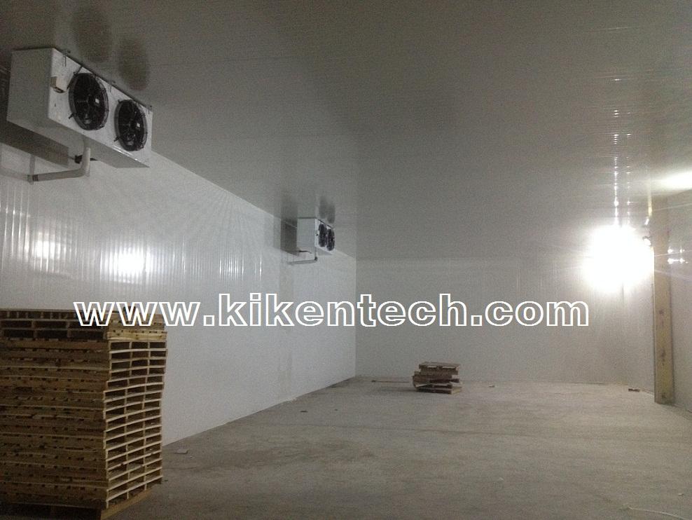 Hướng dẫn cách lắp đặt kho lạnh công nghiệp bảo quản, kho lạnh bảo quản công nghiệp hiệu quả. Lắp kho công nghiệp để bảo quản sản phẩm, làm kho lạnh hiệu quả