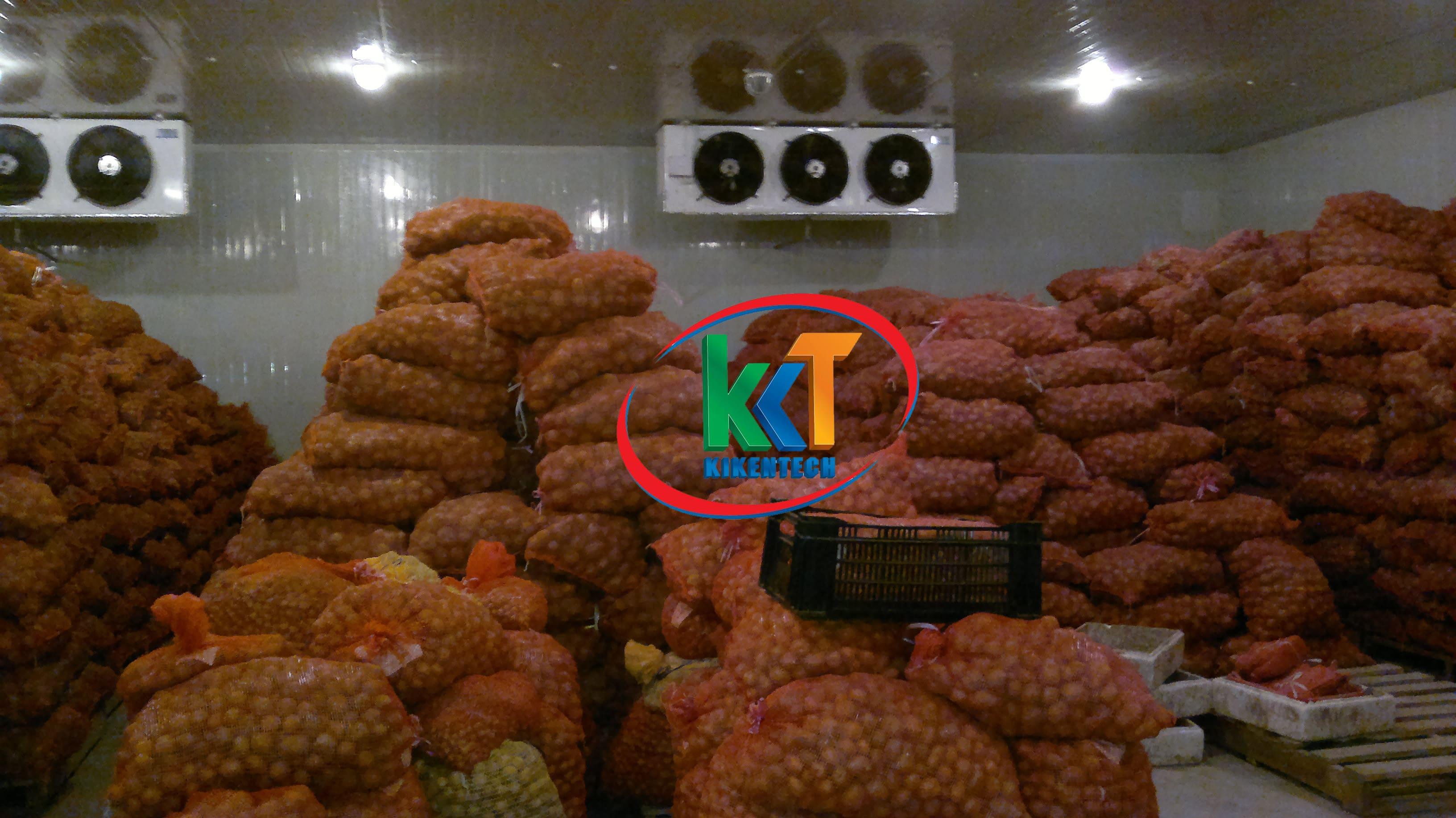 Lắp đặt kho lạnh bảo quản khoai tây để không bị hư hại làm giảm hiệu quả kinh tế. Lắp đặt kho lạnh bảo quản cần đáp ứng các yêu cầu khắt khe để khoai k hỏng