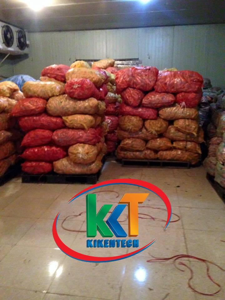 Vấn đề cấp thiết lắp đặt kho lạnh bảo quản nông sản tại vùng chuyên canh