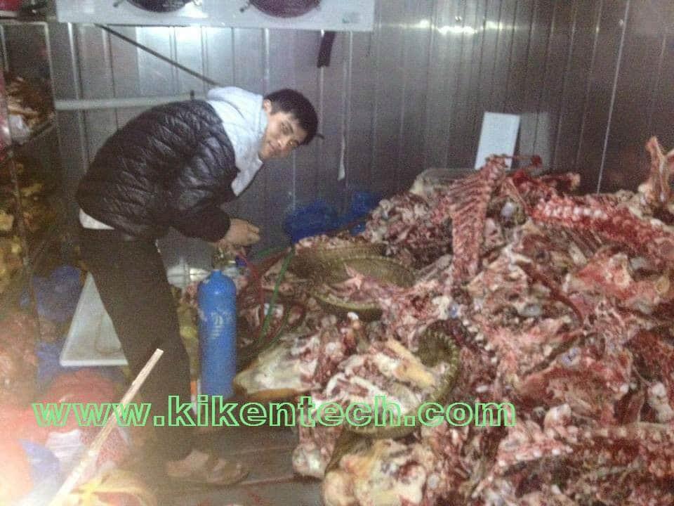 Lắp đặt kho lạnh cấp đông thịt bò tại Vụ Bản Nam Định. Dự án lắp đặt kho lạnh cấp đông tại Nam Định. Lắp đặt kho lạnh cấp đôn, kho lạnh bảo quản thịt bò