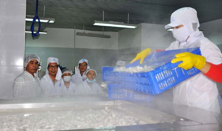 Hướng dẫn lắp đặt hệ thống cấp đông IQF hiệu quả | Dịch vụ lắp đặt kho lạnh công nghiệp chất lượng. Lắp đặt hệ thống cấp đông IQF hiệu quả cùng Kikentech