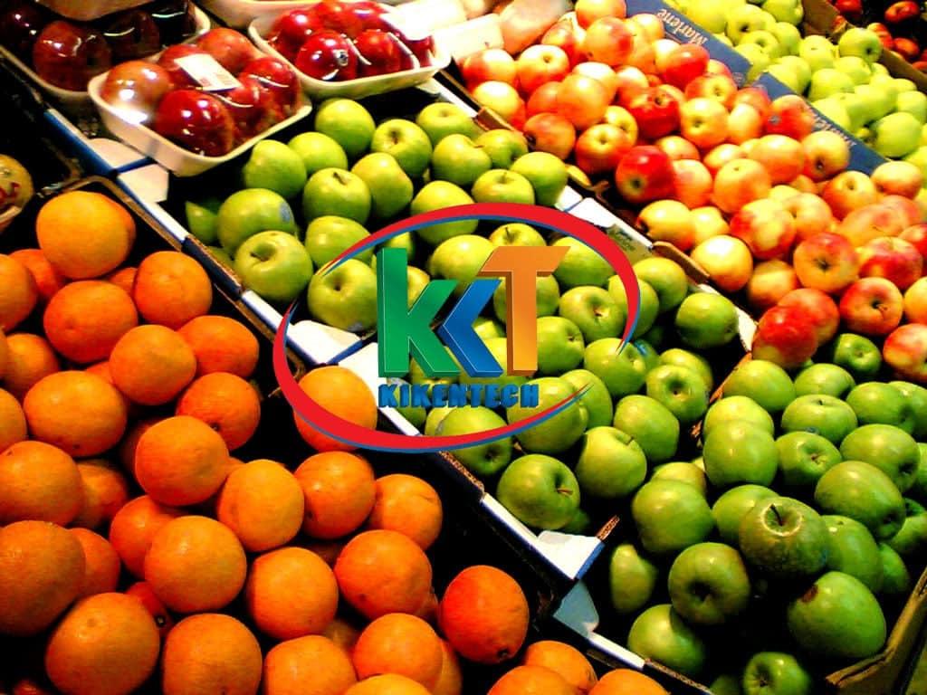 Dịch vụ lắp đặt kho lạnh bảo quản hoa quả chất lượng giá rẻ