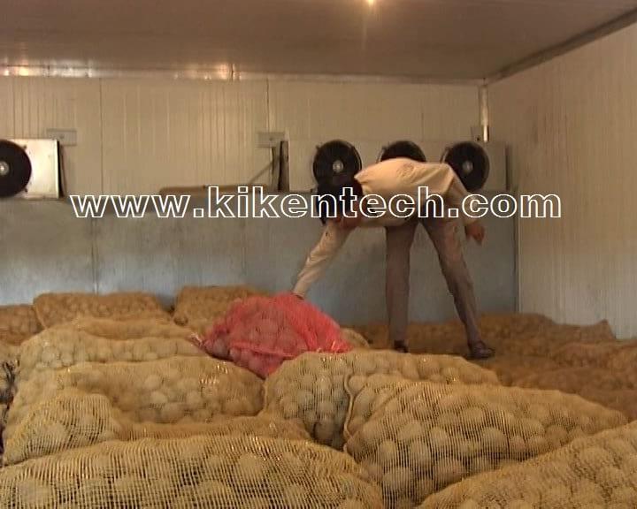 Thi công lắp đặt kho lạnh bảo quản khoai tây giúp khoai tây không bị hư hại. Lắp kho lạnh bảo quản nông sản, rau củ quả. Làm kho lạnh bảo quản khoai tây