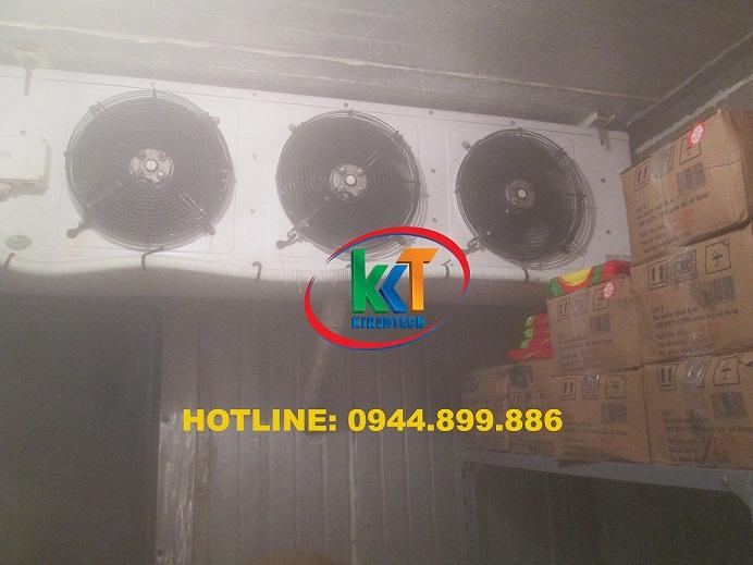 Dự án lắp đặt kho lạnh bảo quản nông sản ở Đà Nẵng, lắp đặt kho lạnh bảo quản ở Đà Nẵng. Lắp đặt kho lạnh ở Đà Nẵng bảo quản nông sản xuất khẩu Hàn Quốc