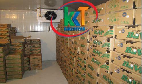 Doanh nghiệp thực phẩm lãi lớn khi làm kho lạnh bảo quản