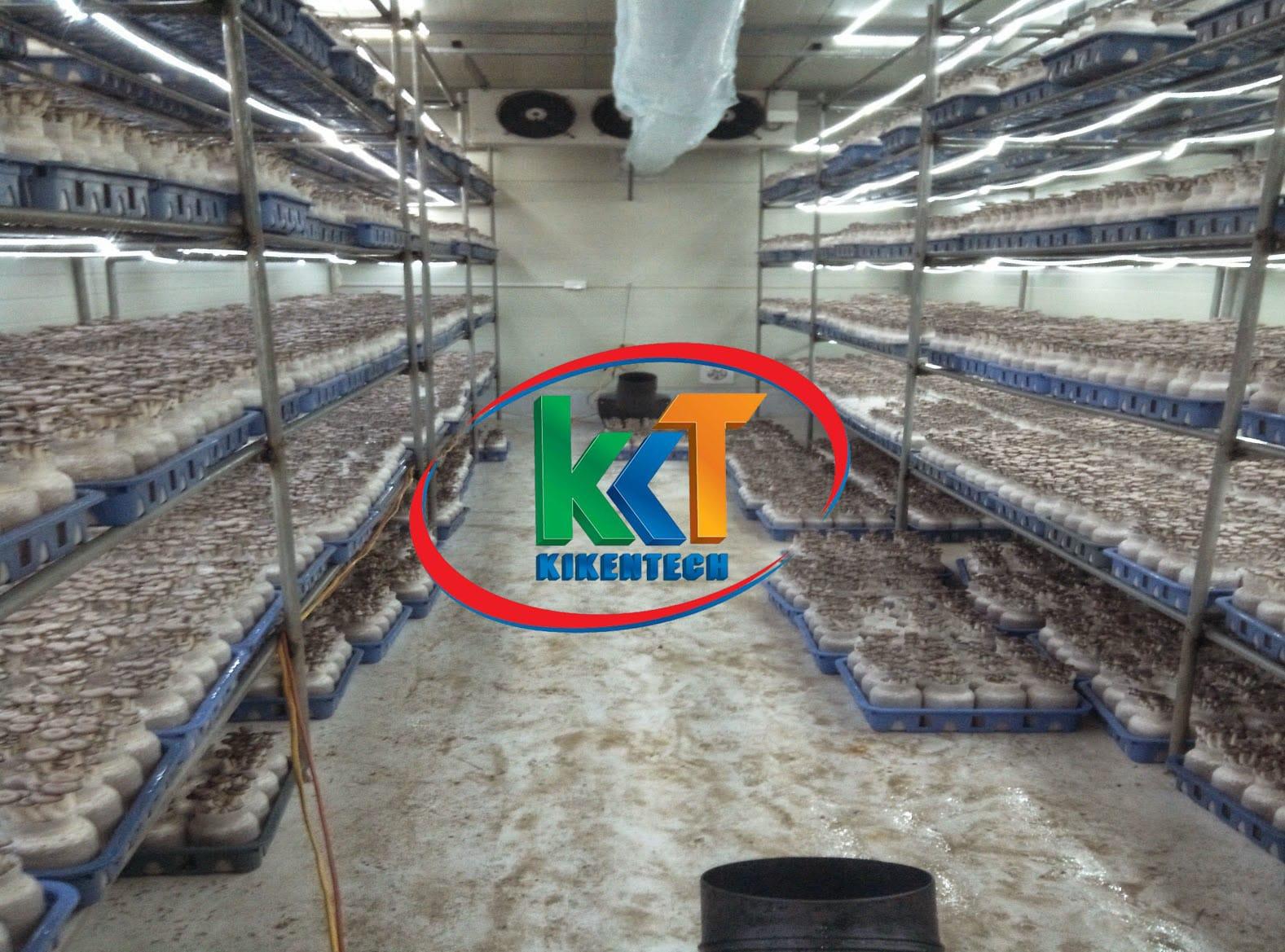 Lắp đặt kho lạnh nông sản, lắp đặt kho lạnh bảo quản nông sản giúp bà con nông dân và doanh nghiệp phát triển